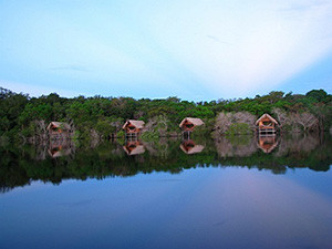 Juma Amazon Jungle Lodge - Amazon - Brazil
