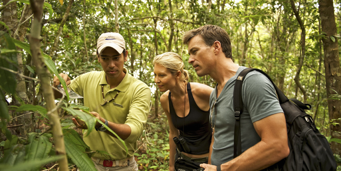 Anavilhanas Jungle Lodge Tours - Jungle Hike
