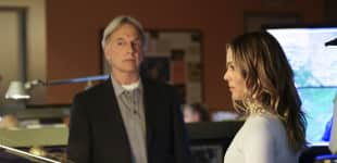 Mark Harmon und Maria Bello