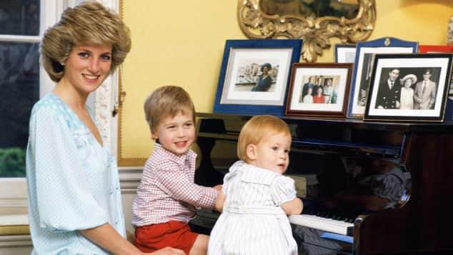 Lady Diana, Prinz William und Prinz Harry