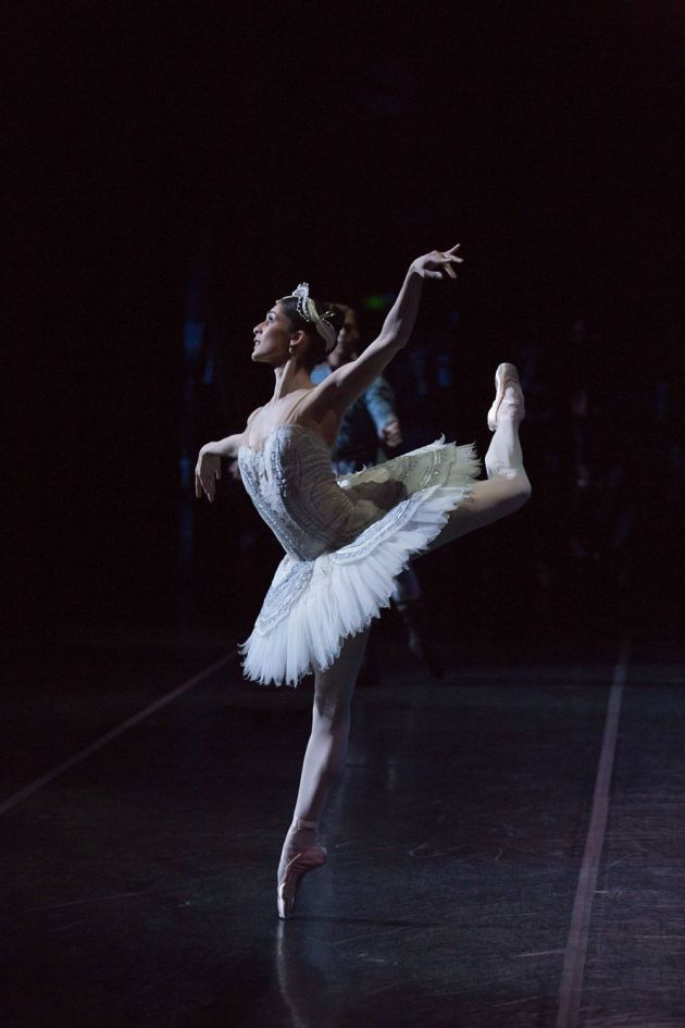 In her debut as Odette in 'Swan Lake'. Photo: LYNETTE WILLS