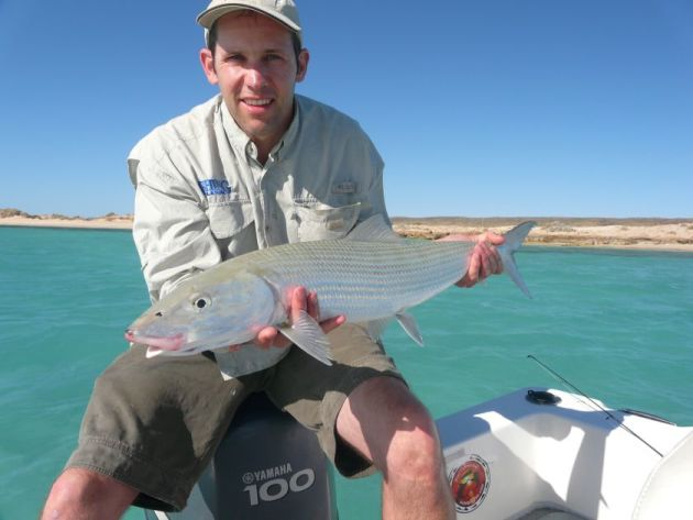 A small scaled bonefish (A. oligolepis) captured and released at Ningaloo Reef. Bonefish are iconic and arguably pound for pound the worlds most socio-economically valuable sportfish.