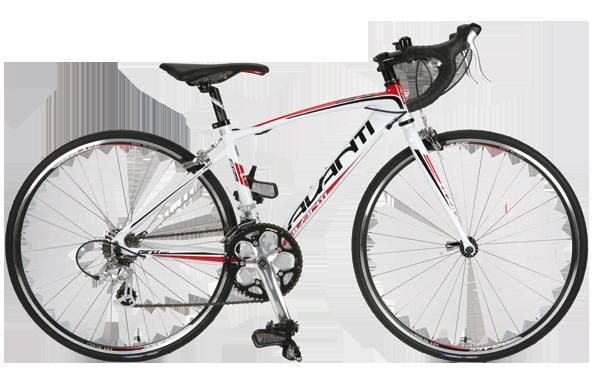 Avanti Giro 650 - Bicycling Australia