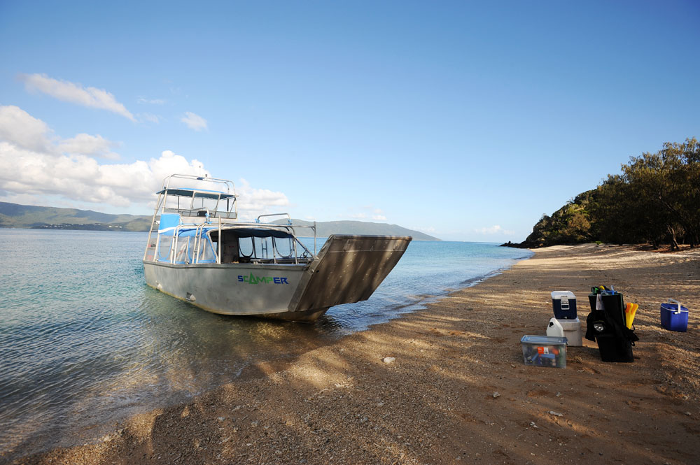The Scamper water taxi drops you right on the beach at Molle Island.