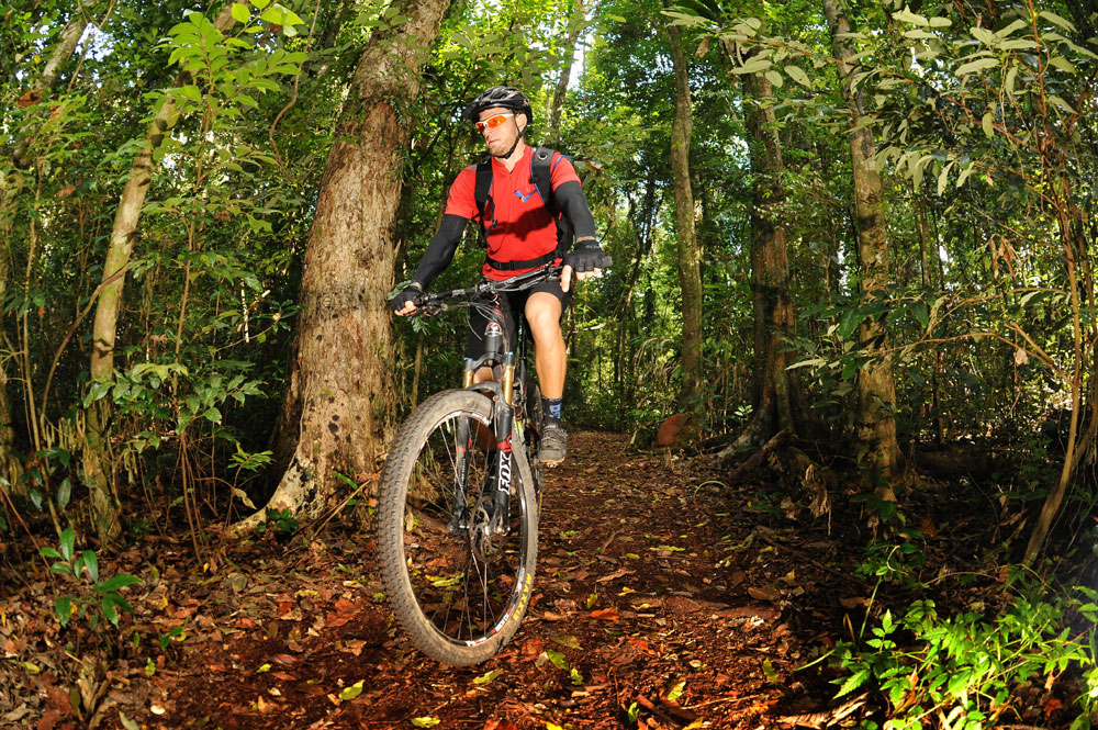 The slippery rainforest trails offer some respite from the heat on the Conway Circuit.