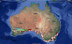 Jesse Carlsson & Durian Rider Out Of Indian Pacific Wheel Race As Leaders Pass 1200km