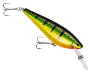 Bagley Lures introduce the Monster Shad