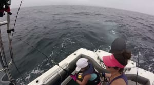 VIDEO: Eight-year-old Chloe Bajada's first marlin