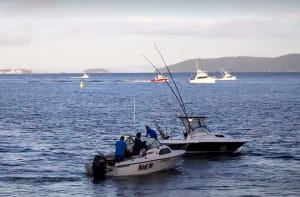 VIDEO: Game fishing in Victoria on the rise