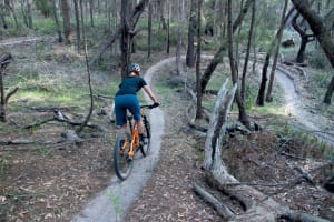 Mountain Biking in Tathra