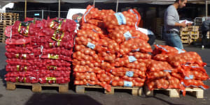 Push to increase veggie exports by 40%