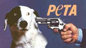 PETA Shelter was a 'Slaughterhouse'