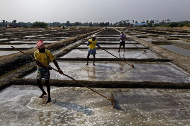 Marakannam salt pan fields near Pondicherry, India. © Ed Kashi/VII Photo.