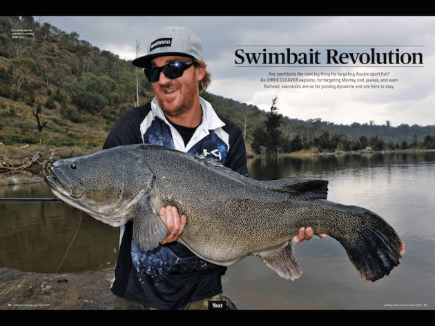 Are swimbaits the next big thing for targeting Aussie sport fish? For chasing Murray cod, jewies, and even flathead, swimbaits are so far proving dynamite and are here to stay.