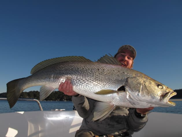 A 21kg 132cm jewfish taken early morning from a deep rock wall