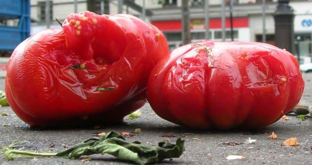 Rotten_tomatoes.jpg