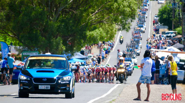 The peloton in race neutral shortly after the start of Stage 5, from McLaren Vale to Willunga Hill. Image: Nat Bromhead