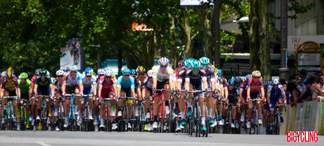 The peloton at speed along Adelaide's city streets during the final stage of the 2017 TDU. Image: Nat Bromhead.
