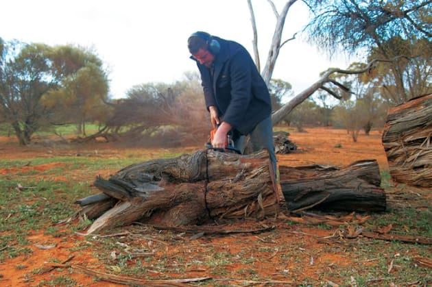 Rare Australian desert timber bangle medium thick sculptural Gidgee