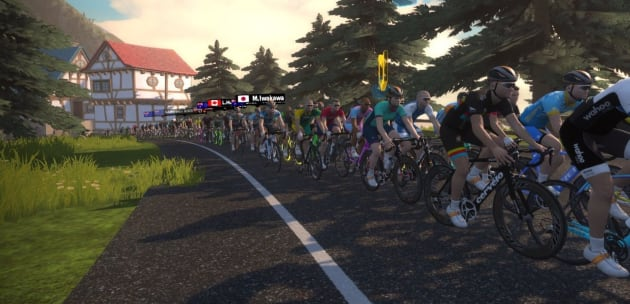 A big bunch enjoying the Aussie Hump Day Ride on Zwift.