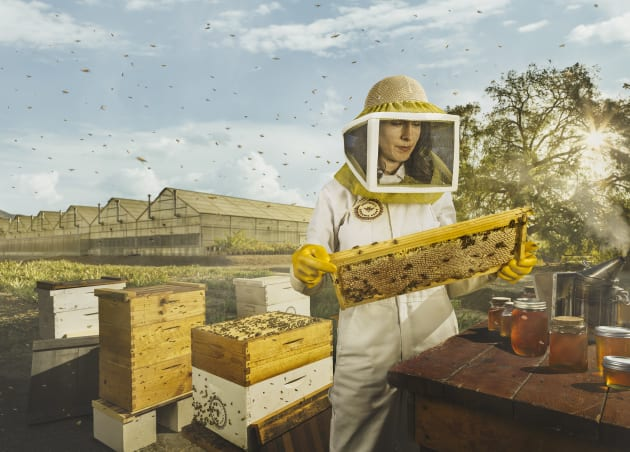 © Chris Crisman. Bee keeper on location with real bees, in Los Angeles. Part of the Own it campaign for Intuit Quickbooks.