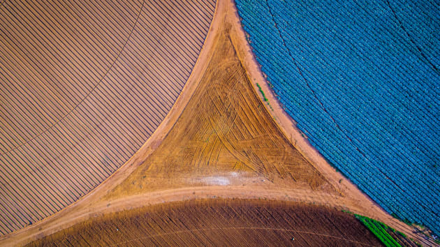 Crop Triangle by Eddie Oosthuizen. Crop irrigation and agriculture can also be fascinating visually, as shown here with a barren triangle forming between three crop types planted in a circular motion for efficient irrigation.