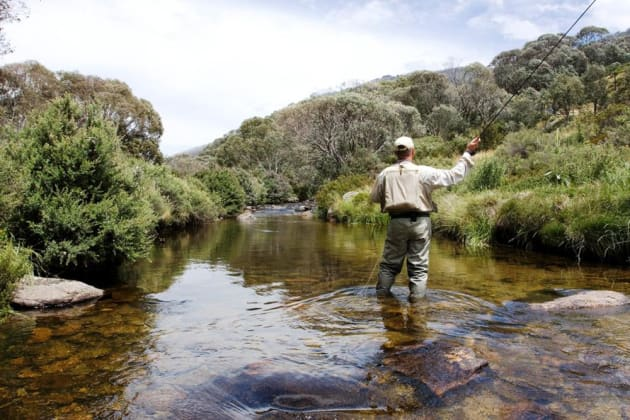 Video free fly fishing expo in thredbo on again in 2017 for Fly fishing shows