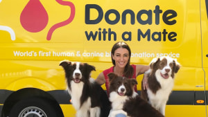 Pedigree asks dogs and humans to donate blood together
