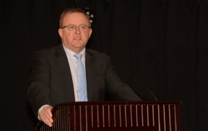Act Amendment Bill doesn't go Far Enough: Albanese