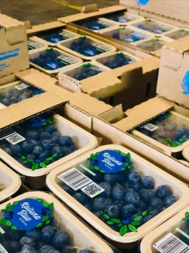PIDA 2019 finalist in the food category: Punchbowl Packaging for Kaituna Blueberries peel-able, re-sealable, tamper-proof top seal fibre punnets.