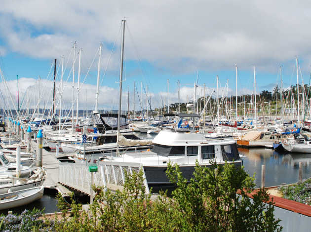 The popular Oyster Cove Marina is planning to add an extra 50 berths to its current 250 berth capacity..