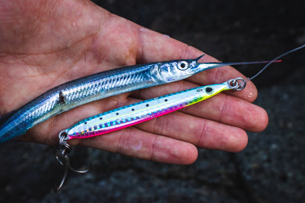 metal lure and baitfish