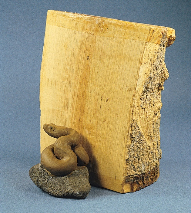 susanwraight-snake-with-boxwood.jpg