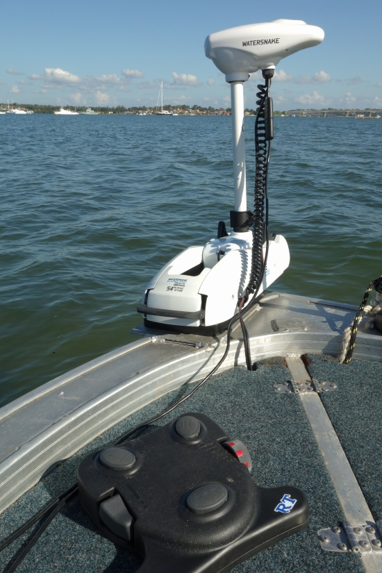 electric bow mount motor
