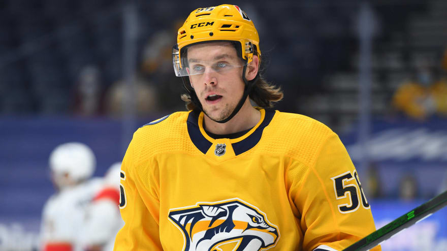 Predators reportedly discussing contract with Haula