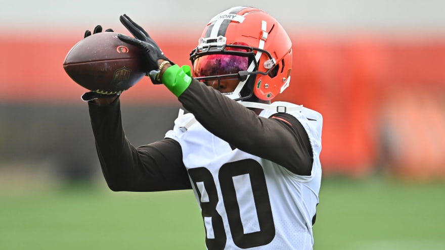 Browns believe WR Jarvis Landry suffered sprained MCL