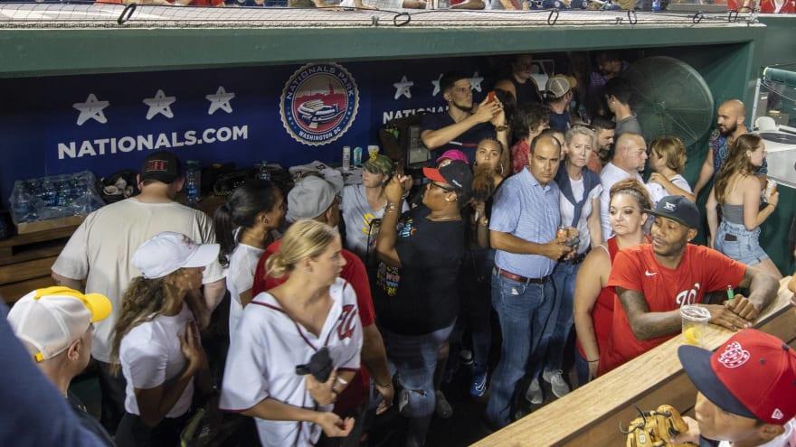 Manny Machado, Fernando Tatis Jr. opened dugout to protect fans