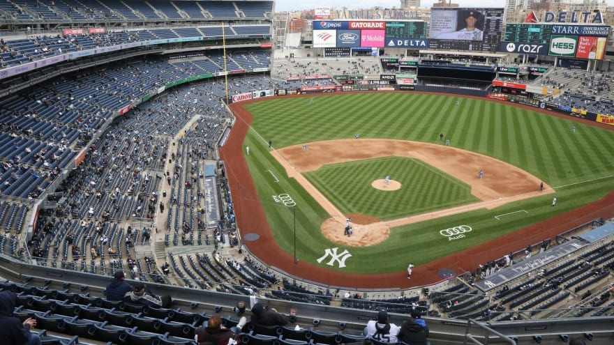 Yankees fan obliterated by security apologizes for 'stupid' act