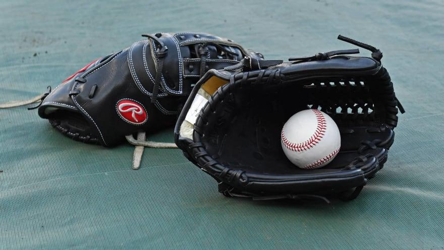 Japanese baseball set to return June 19