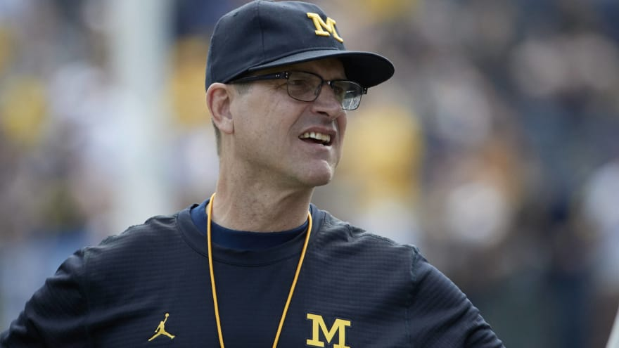 Jim Harbaugh has crazy theory about chickens