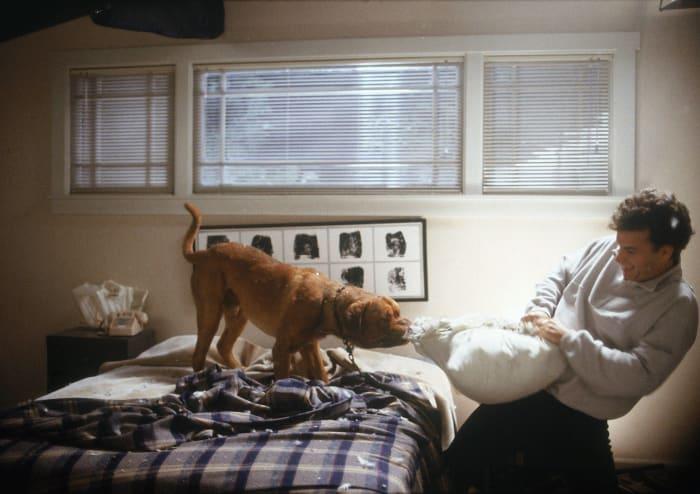 """""""Turner & Hooch"""" (1989)"""