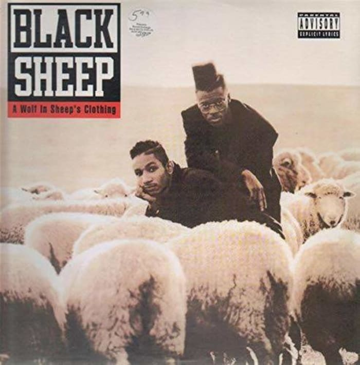 """Black Sheep - """"A Wolf in Sheep's Clothing"""""""