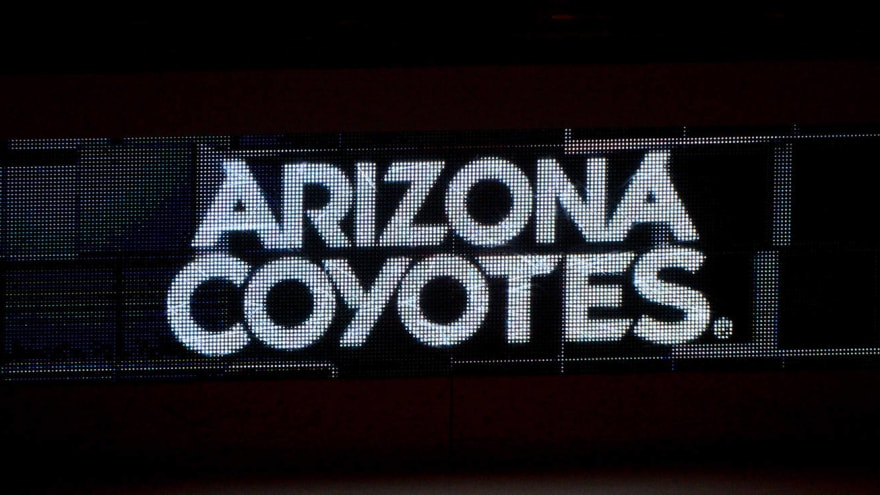 Coyotes to interview Mike Van Ryn for HC job