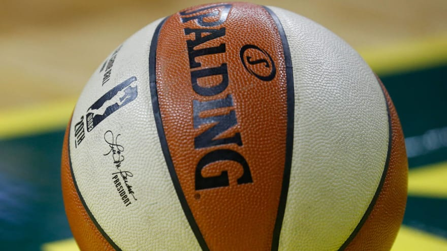 Nets minority owner completes purchase of WNBA's New York Liberty
