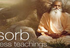 YogaVille – Satchidananda Ashram Yoga Retreat & Teacher Training Program