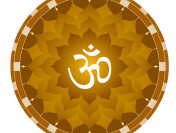 Interview with Vedacharya David Frawley – Founder of Vedanet