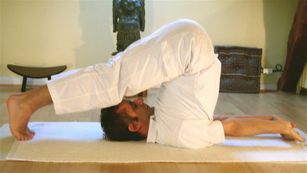 3.Halasana (Cow Face Pose)