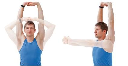urdhva baddhanguliyasana yoga pose