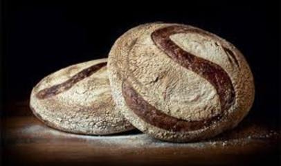 Sonoma Baking Company