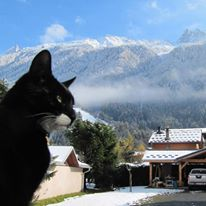 Bubba in Chamonix